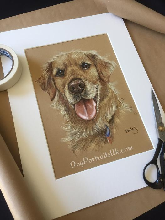 Retriever portrait, pet portrait, dog painting