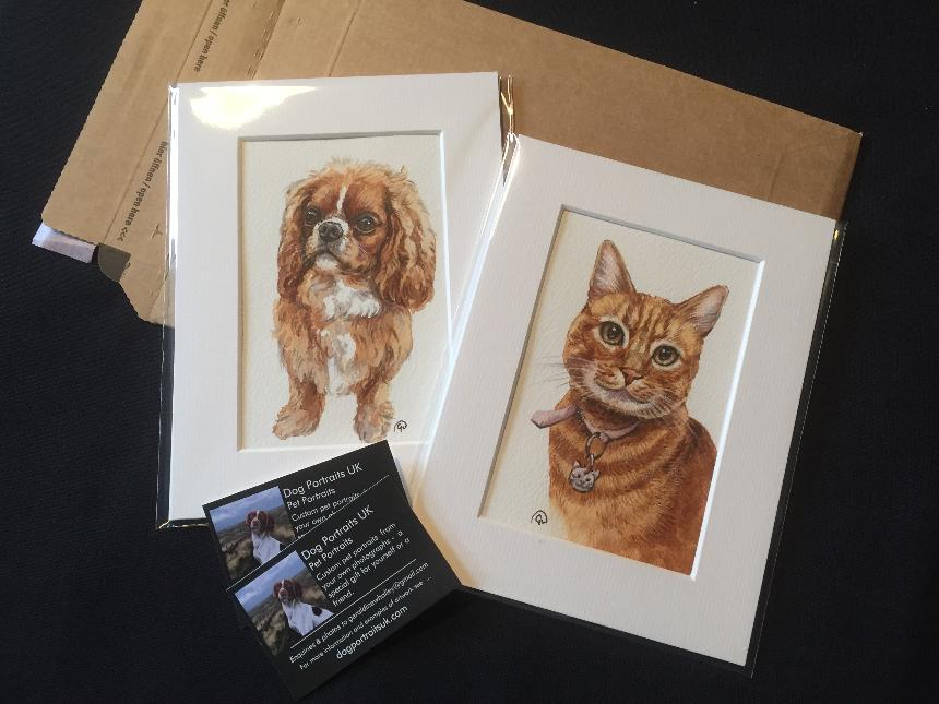 pet portraits in watercolour, dog portraits uk