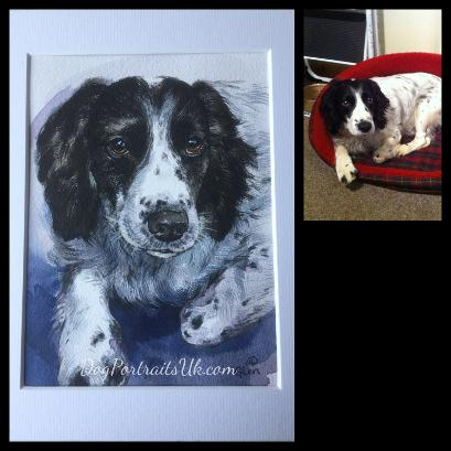 watercolour dog portrait, custom pet portrait
