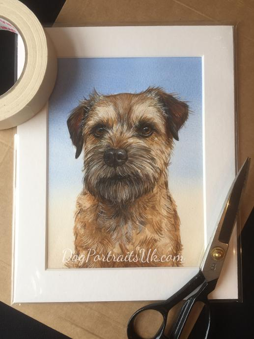 custom pet portrait in watercolour, border terrier painting